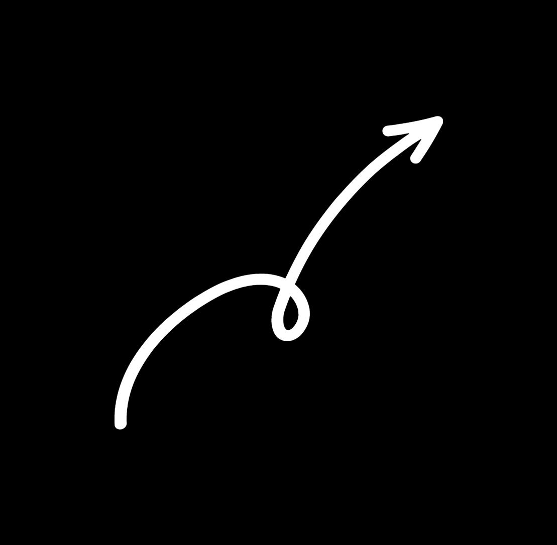 Word eens volwassen! [Boek] - Next Level Online Ondernemen logo